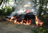 В Сети появились фотографии крупного пожара в Воронежском центральном парке