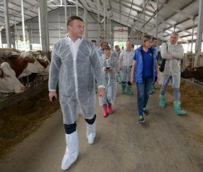 Томас Овербек: «Коровы «Молвеста» выглядят счастливыми»