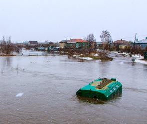 На составление карты зон затопления в Воронежской области потратят 66 млн рублей