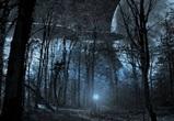 Воронежцы считают, что НЛО не прилетают на Землю из-за недоразвитости людей