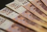 Ректоры воронежских вузов раскрыли информацию о своих заработках