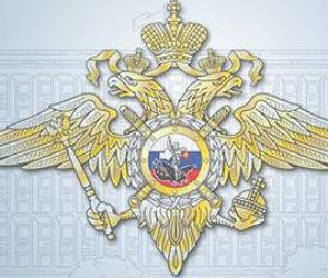 Воронежская полиция перед ЧМ-2018 перестала сообщать о преступлениях и ДТП