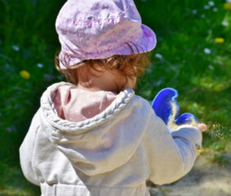 Детский сад в Воронеже, где дошкольники подхватили сальмонеллез, откроют 13 июня