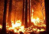 В Воронежской области спасатели объявили штормовое предупреждение
