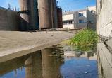 В Воронеже крыша старого завода начала жить собственной жизнью