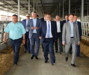 Компания «Молвест» открыла новый молочный комплекс в Верхнемамонском районе