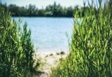 В Москве пьяный воронежец утонул в озере