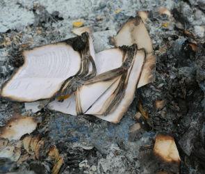 В Воронеже в сгоревшей квартире нашли труп женщины