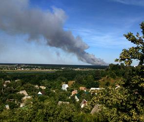 Воронежцы публикуют фото крупного лесного пожара в Рамонском районе