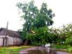 Ураган под Вороне...