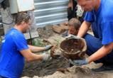 На строительной площадке в Воронеже нашли человеческие останки