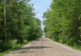 На обочине дороги под Воронежем найден окровавленный труп, обмотанный веревкой