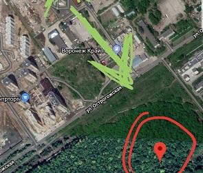 В Воронеже пропавшего мужчину нашли мертвым в лесу в 600 метрах от дома