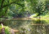 В Воронежской области подросток утонул, купаясь в реке