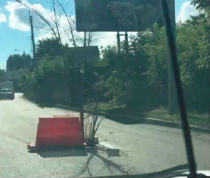 Дерево, торчащее посреди дороги, сняли на видео в Воронеже
