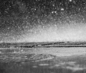 17 и 18 июля на Воронежскую область обрушатся сильнейшие дожди