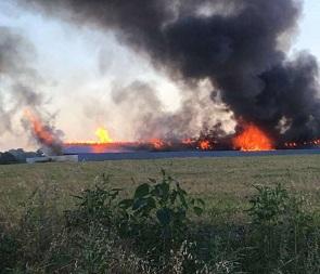 Опубликованы фото и видео крупного пожара, уничтожившего ферму под Воронежем