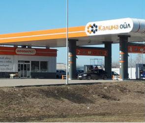 В Воронеже силовики задержали владельца сети автозаправок «Калина Ойл»