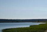 35-летняя женщина утонула в озере под Воронежем