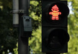 В Воронеже к 1 сентября проверят исправность светофоров, находящихся около школ