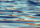 Суд закрыл популярный пляж на левом берегу Воронежа из-за опасных бактерий