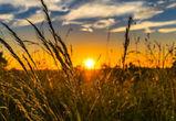 Последние выходные лета будут в Воронеже теплыми и солнечными