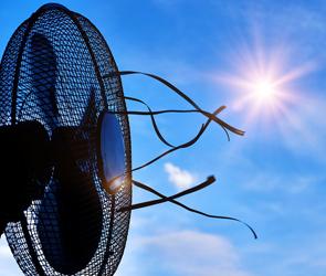 В Воронеже и области из-за жары вновь объявлен высокий уровень опасности