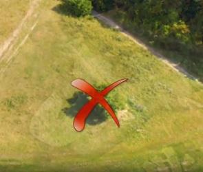 Видеофакт: Для создания биокартины на склоне холма в экс-«Динамо» спилили дерево