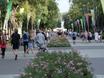 Фестиваль «Город-Сад»-2018 171235