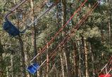 СКР проверяет информацию о падении сосны на ребенка в воронежском парке