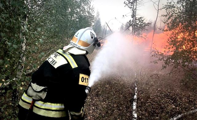 Пожар на полигоне под Воронежем потушили спустя почти полтора суток