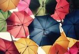 В ближайшие выходные в Воронеже возможны дожди