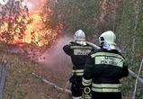 В пятницу в Воронежском регионе было зафиксировано 17 ландшафтных пожаров