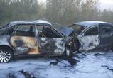 Жуткое ДТП под Воронежем: сгорели 2 иномарки, погибли 5 человек (фото)