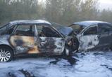 Стали известны подробности ДТП, в котором погибли пять человек под Воронежем