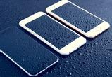 Эксперты МТС выяснили, какие расцветки смартфонов пользуются популярностью