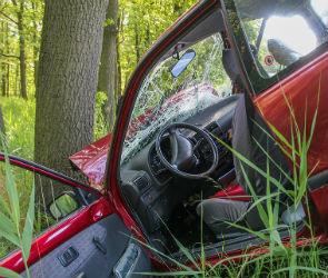В Воронежской области опрокинулась иномарка: один человек погиб, один ранен