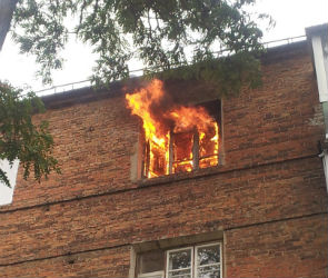 Масштабный пожар на левом берегу Воронежа тушат почти 100 человек