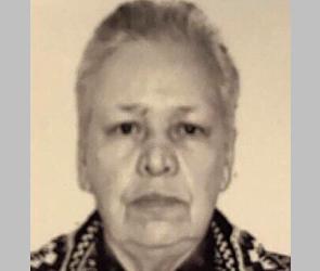 В Воронеже волонтеры продолжают поиски 88-летней женщины, пропавшей 2 дня назад