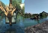В Воронеже начали расчищать Масловский затон