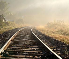 В Новоусманском районе поезд Москва — Воронеж насмерть сбил человека
