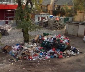 Воронежцы: Двор нашего аварийного дома превратили в помойку