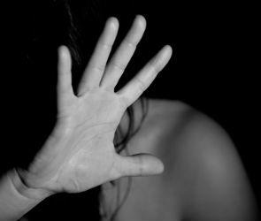 Судимый за сексуальное насилие житель воронежского села убил жену в пьяной ссоре