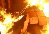 В Воронежской области сожгли 4,5 тонны наркотического мака