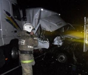 В страшном ДТП с двумя фурами на М-4 под Воронежем погиб один из водителей
