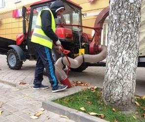 В Воронеже уличный пылесос заменил труд целой бригады дворников