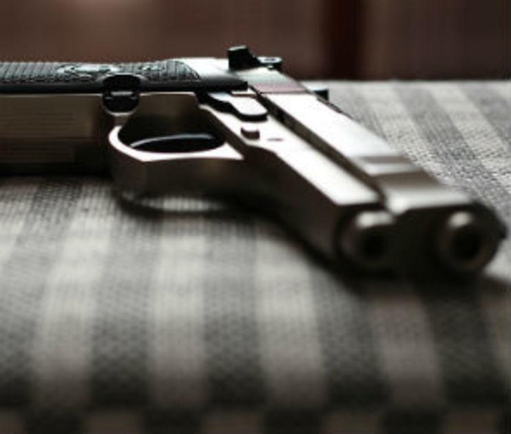В Воронеже разыскивают живодера, стрелявшего в собаку и людей