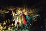 80-летнего грибника, потерявшегося на болоте под Воронежем, нашли живым