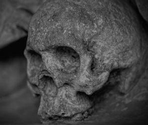 В старом погребе в Воронежской области нашли человеческие останки