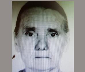 Под Воронежем вторые сутки ищут 81-летнюю бабушку с потерей памяти